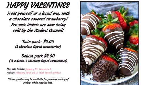 Valentines Day Chocolate Covered Strawberries
